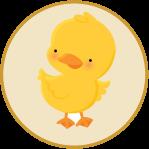 lpi_chick